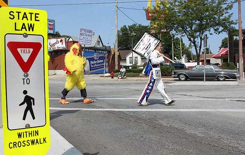 You shouldn't have to be a daredevil to cross the road.  Why did the chicken cross the road?  To remind motorists the state laws requires they stop for pedestrians in a crosswalk.